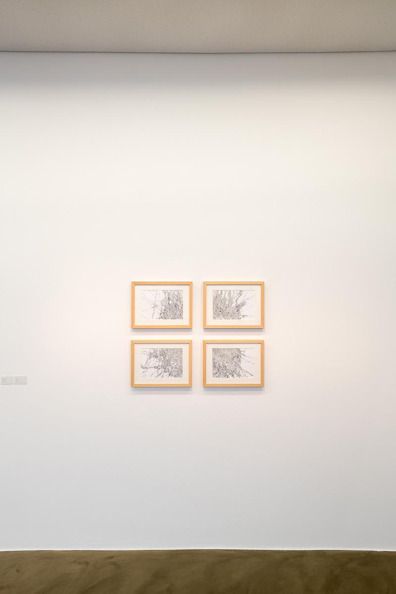 Rheinland, Ausstellung,