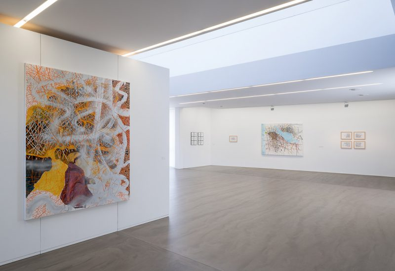 Renata Jaworska, Politische Kunst, Immndorff Meisterschülerin,